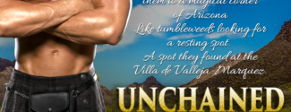 Unchained ~ A Family Justice Novel